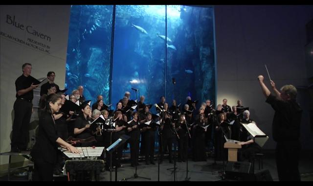 IM-Video_Chorale-of-the-Jellies_640x380